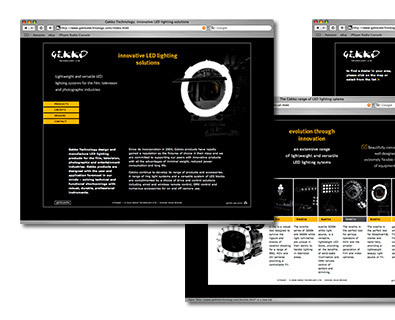 Gekko website design and production